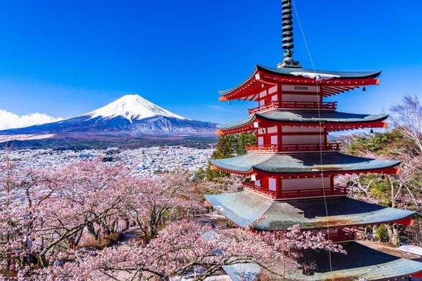 どちらも五七五の俳句と川柳、見分けるポイントは季語の有無以外にも3つある/毎日雑学1