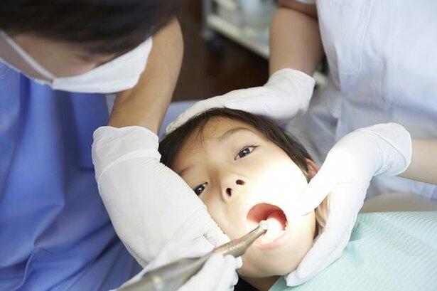 歯医者がコンビニよりも多い理由は儲かるからではない1