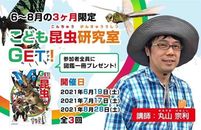 【6~8月の3ヶ月限定】こども昆虫研究室 GET!